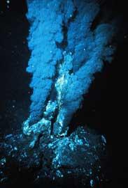 fumarola negra hidrotermal