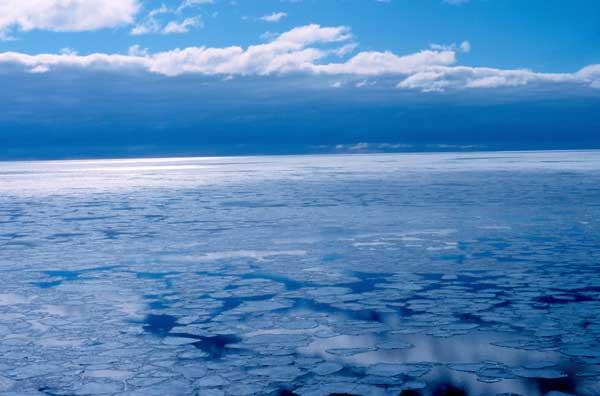 hielo marino en el Antártico