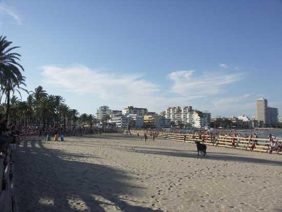 Peñíscola vaquillas en la playa