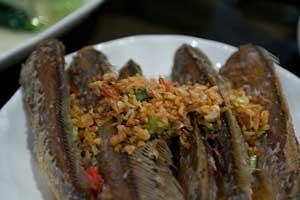 pez león, un plato delicioso