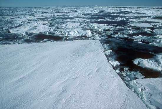 trozos de hielo en el Mar de Weddell