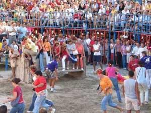 vaquillas en Peñíscola