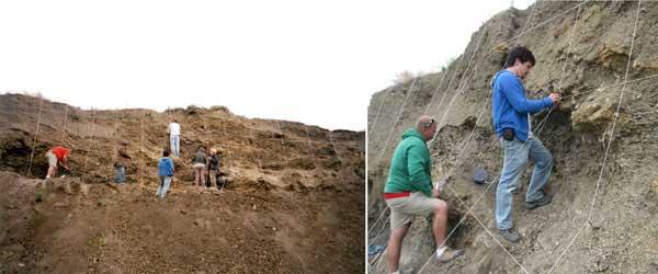 excavación de amonites en Dakota del Sur