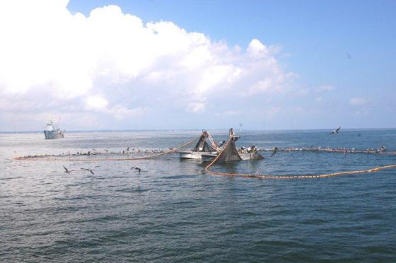 granja acuícola en alta mar