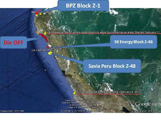 mapa de los posibles estudios sísmicos en la costa de Perú