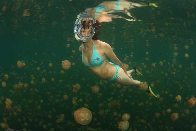 una mujer nada entre miles de medusas