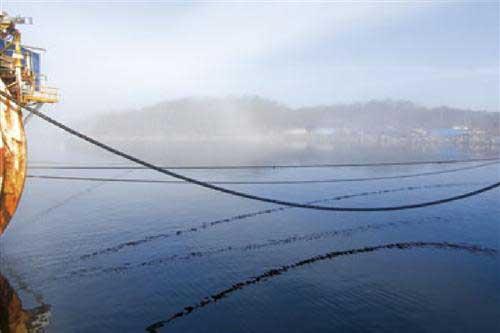 tendido e un cable eléctrico submarino