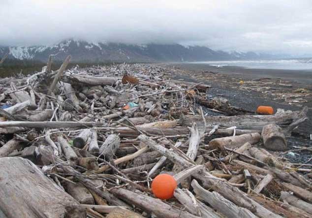 escombros de tsunami de Japón llegarán hasta Alaska