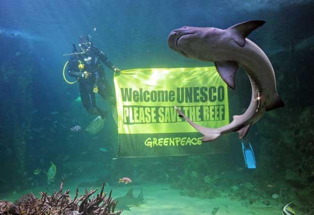 Greenpeace pide salvar la Gran Barrera de coral