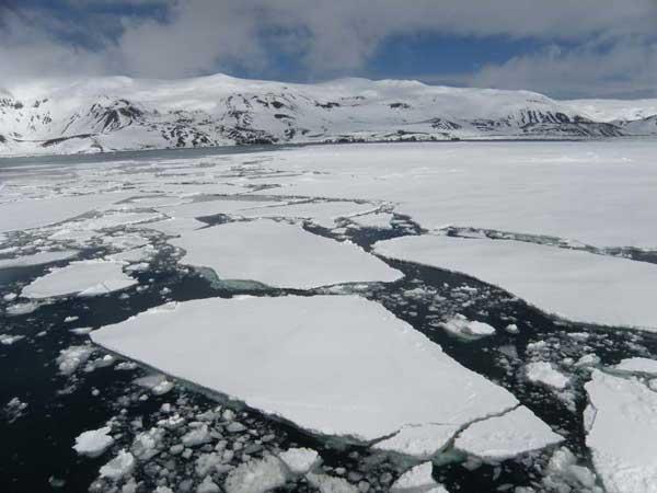 hielo marino alrededor de la Isla Decepción, Antártida