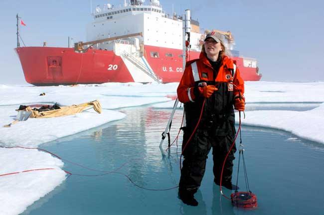 Icescape, medidas ópticas del fitoplancton en el Ártico