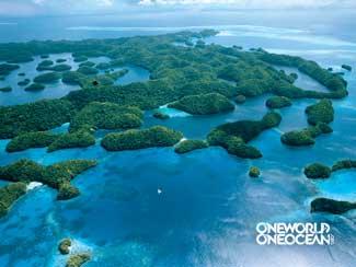 manglar one ocean