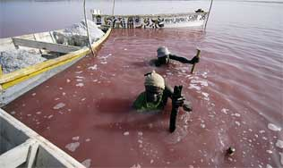raspando sal del fonde del Lago Rosa, Senegal