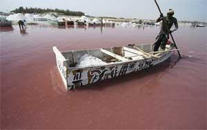 transportando sal a las salinas del Lago Rosa, Senegal
