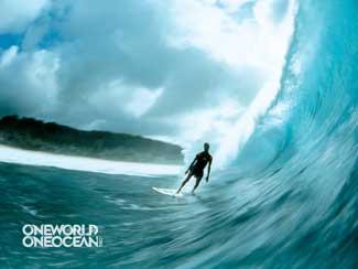 surf one ocean