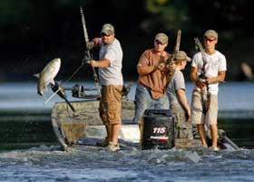 pescando carpas con tiro con arco