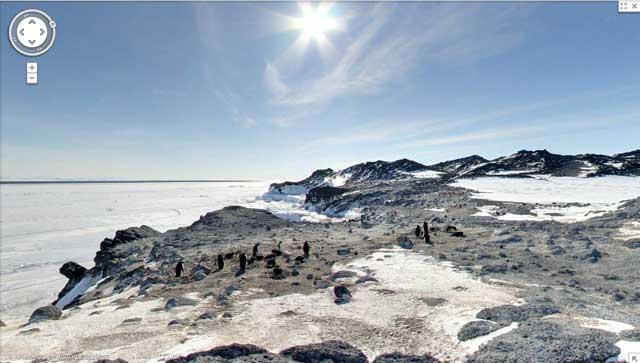 colonia pingüinos Adelia en Cape Royds, Antártida