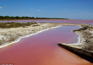 lago de aguas rojas salinas Camargue, Francia