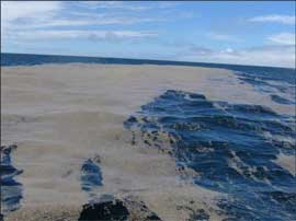 piedra pómez flotante tras una erupción volcánica submarina