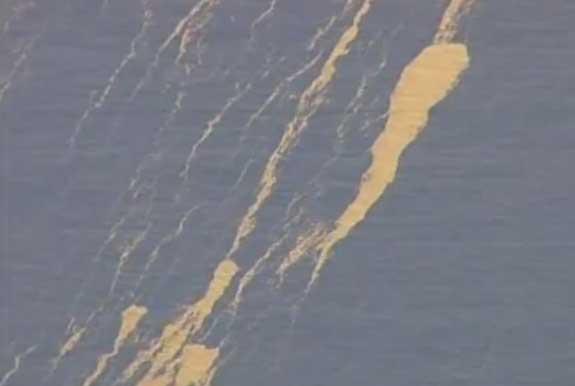 isla de piedra pómez flotante en el Pacífico Sur