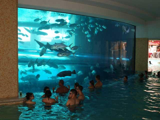 piscina del hotel Golden Nugget