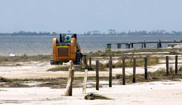 limpieza de nutrias muertas en Mississippi