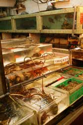 mariscos vivos mercado de Honk Kong