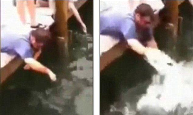 pez muerde el brazo de un hombre