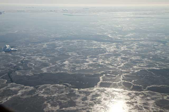 placas de hielo marino con icebergs