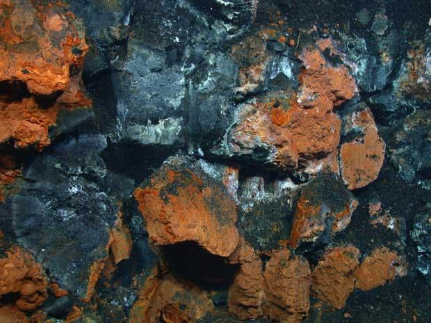 tapetes minerales y microbianos en el fondo del mar