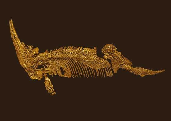 Cryopterygius kristiansenae - scaner en 3D