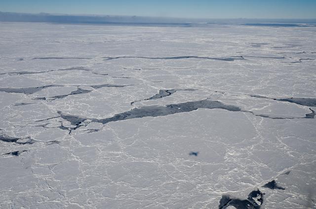 hielo marino en el Mar de Bellingshausen, Antártida