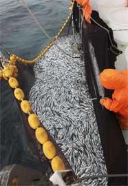 lance de pesca de un barco de la UE