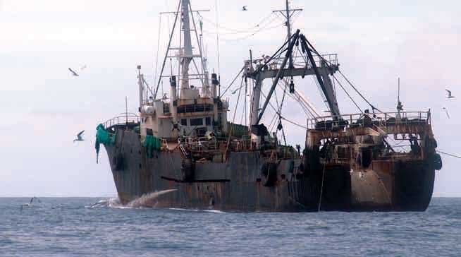 pesquero ilegal en Sierra Leona