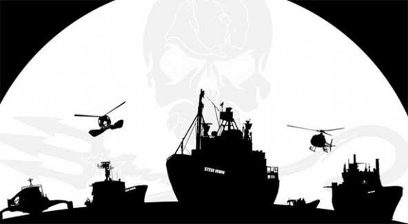 Sea Chepherd cero tolerancia a la caza de ballenas