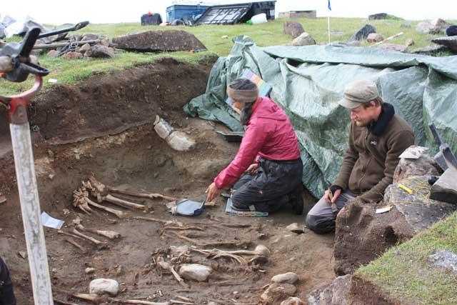 arqueólogos descubren antiguos huesos de colonos nórdicos en Groenlandia