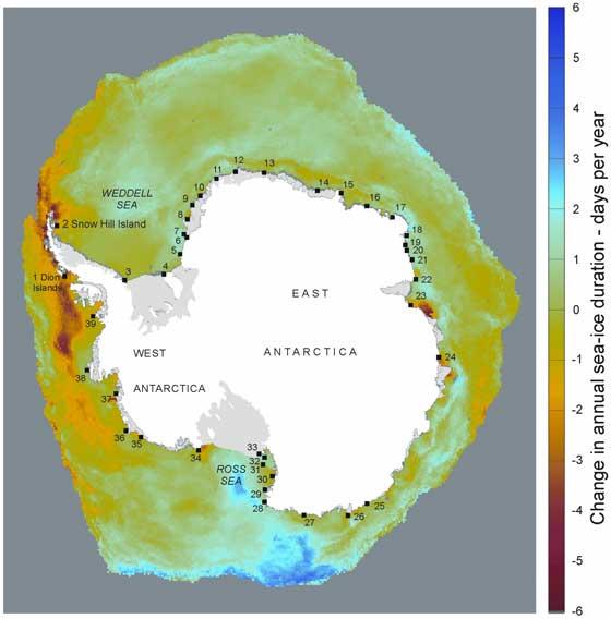 colonias de pingüino emperador en la Antártida