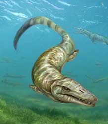 Pannoniasaurus inexpectatus