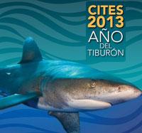 CITES 2013 - año del tiburón