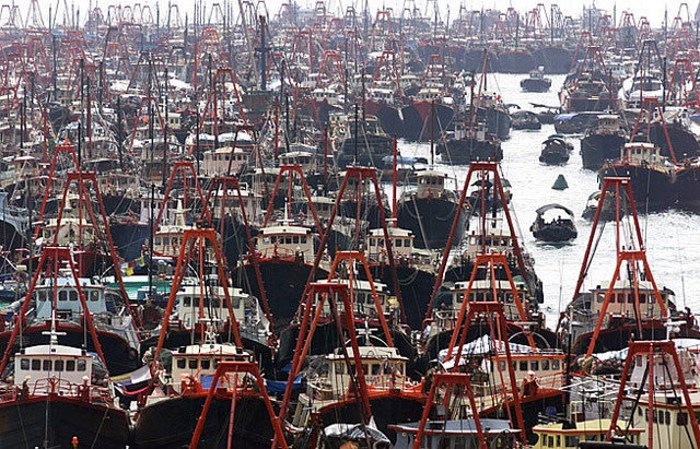 flota pesquera sobredimensionada