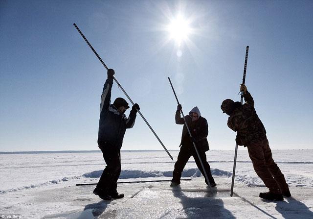 pesca del esturión en lago helado - lanzas