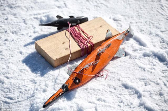 señuelo para pesca del esturión en lago helado