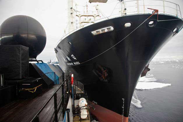 colisión del Bob Barker y el Nisshin Maru