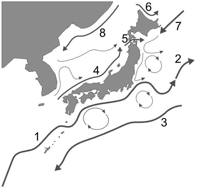 corrientes marinas en el archipiélago japonés