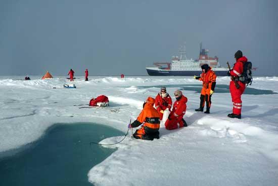 estudiando el ecosistema del Ártico