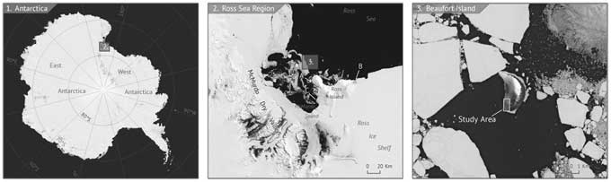 Isla de Beaufort, sur del Mar de Ross, Antártida