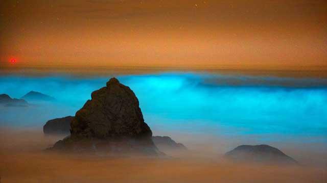 olas azul neón en una playa de California