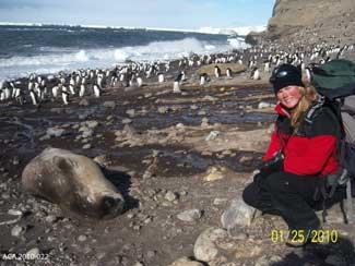 Michelle LaRue, estudio de pingüinos Adelia en la isla de Beaufort