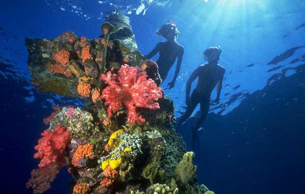 buceo en Chuuk Lagoon