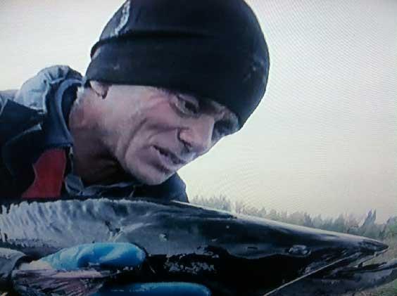 Jeremy Wade pesca un siluro en chernobyl